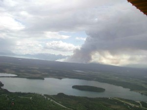 aerial, photography, forest, fire, distance