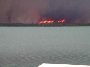veľké, tmavé, dym, rising, oheň, plamene lesného