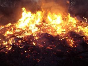 campfire, flames