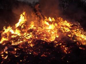 fire, campfire