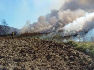 firefighter, approaches, summer, fire, hill