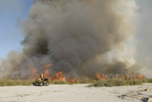 Feuerwehrmann, Mitarbeiter, Monitore, vorgeschrieben, brennen, reiten, Fahrzeug