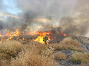 fireman, field, burning, leases
