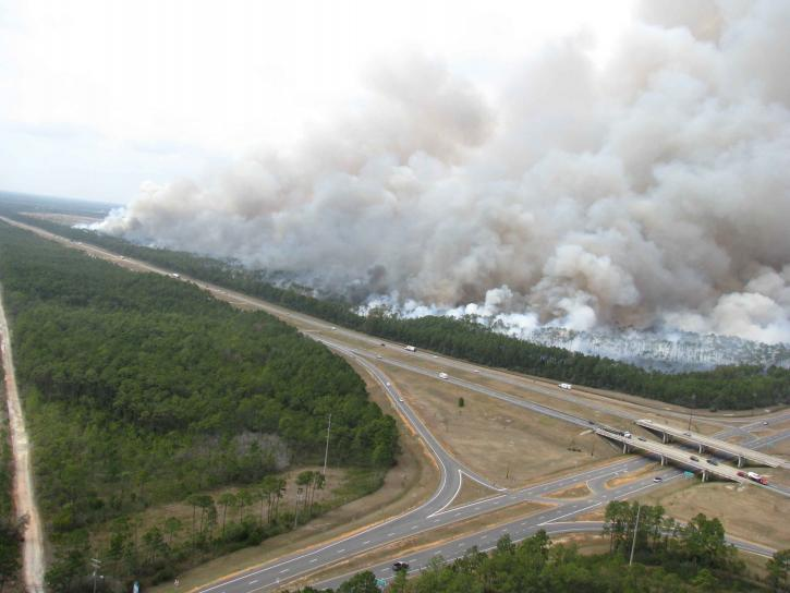 forest, fire, highway