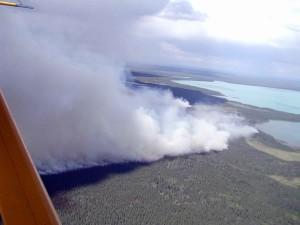 immense forêt, le feu, la fumée, le lac