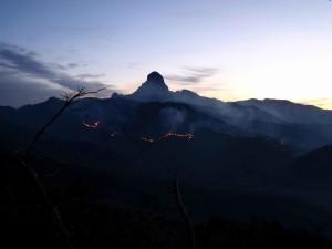 noc, oheň, hory