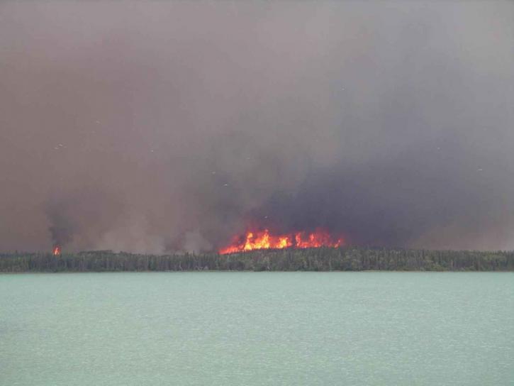 červená, oheň, plamene, tmavý dym, lesné, oheň