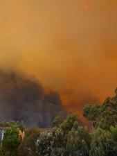 smokey, fires