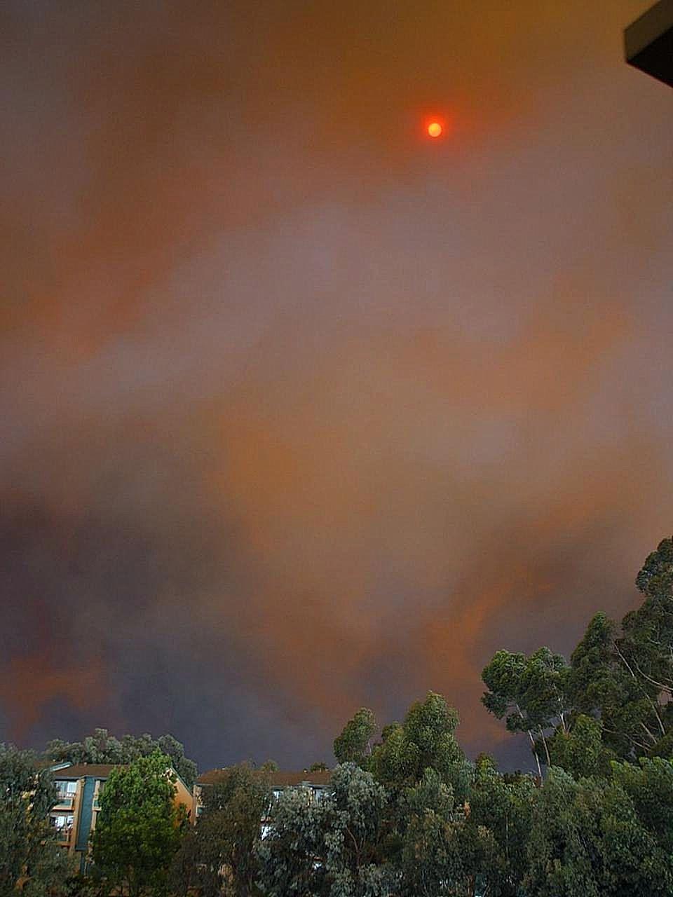 новогодний картинки пожара от солнца дорогие раритетные современные