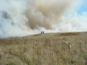 deux, pompiers, haut, colline, fume, feu