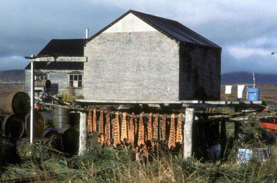 fish, drying, village