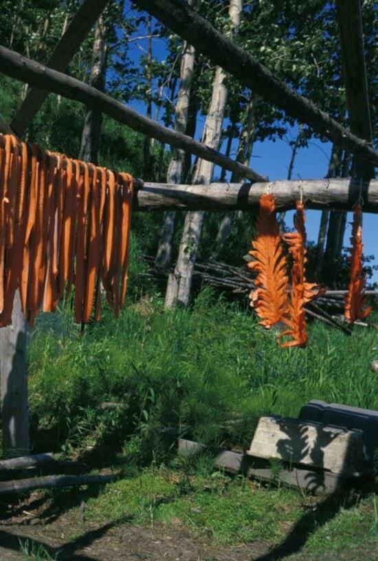 fish, meat, drying, racks