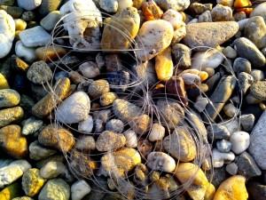 pêche, nylon, cordes, roches