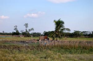 villaggio rurale, Upazila, Patuakhali, Bangladesh