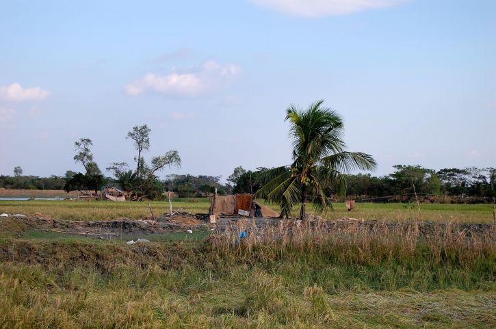pueblo rural, Upazila, Patuajali, Bangladesh