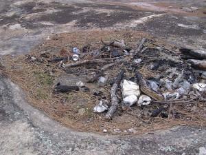 granite, outcrop, habitat, destruction