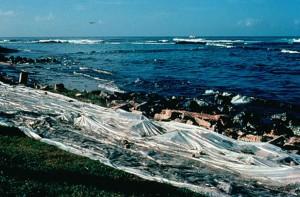 litorale, pulizia