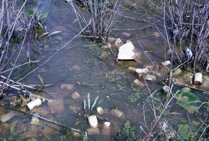 l'eau, la pollution, l'habitat, polution