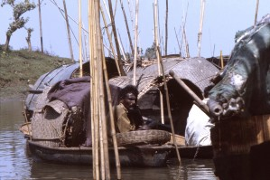 homme, bateau, chemin, Char, île, district, Romari, au nord-est, le Bangladesh