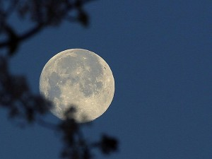 luna, noche, cielo, por completo, luna