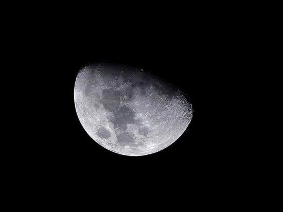 lune, jaune, nuit