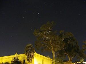 nuit, étoiles, arbres