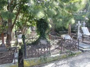 envahi, tombe, karori, cimetière
