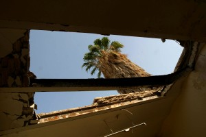 palm tree, visible, hole, roof, Muthenna, intermediate, school