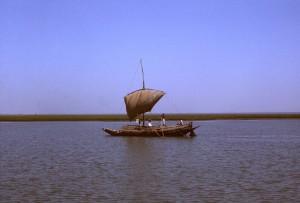 Segel, angetrieben, Boot, Reisen, nicht identifiziert, Fluss, Land, Bangladesch