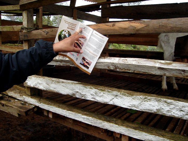 agricultural program, brochure, goat, farmer