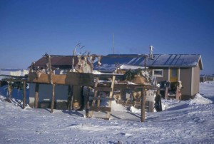 village, maison, debout, plate-forme, le caribou, les peaux, les bois