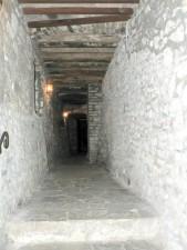 vignoble, cave