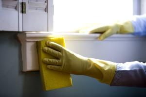 Fenster, Reinigung, Schutz-, Gummi, Handschuhe, Waschen, Fenster
