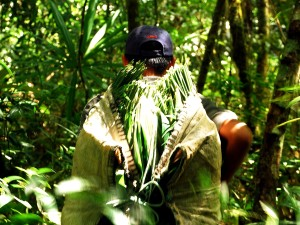 xate, collectors, living, Uaxactun, Carmelita, Guatemalas, Maya, biosphere, reserve
