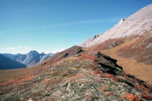 automne, montagnes, scénique