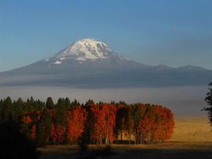 spektakulär, fall, farbe, Szenen