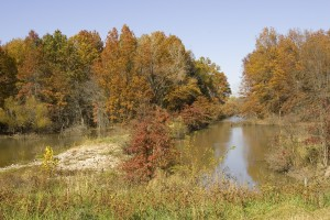 acqua, il controllo, diga, autunno, gli alberi