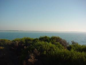 bay, panorama