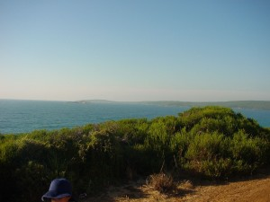 bay, panorama, nature, landscape