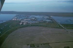 pablo, bahía, yegua, isla, California