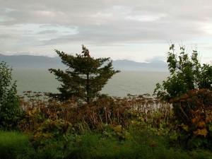 scenics, kachemak zaljevu