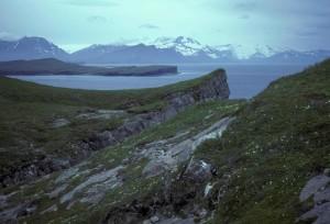 terraza, isla, bahía
