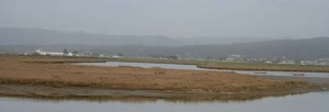 panorama, bay, marsh land