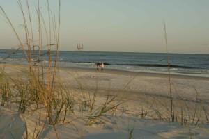 lovely, walk, beach