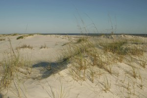 naturel, réglage, plage