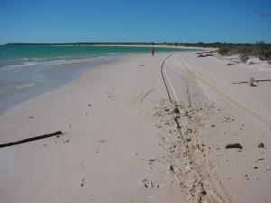 plaža, gunchenault, točka, morski pas, uvala