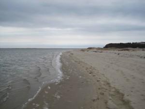 beach, Monomoy, wilderness, refuge, cape