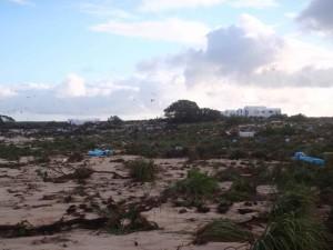 beach, island, tsunami