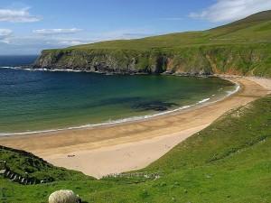 plage, vert, collines, sable