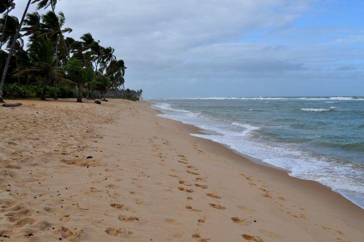 plage, jaune, sable